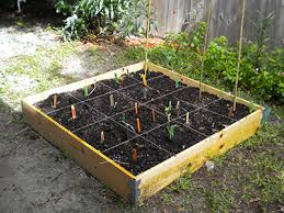 Square Foot Garden Plans