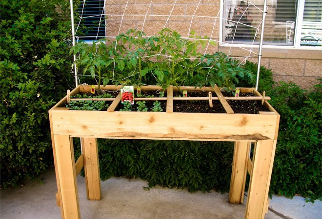 square foot gardening plans