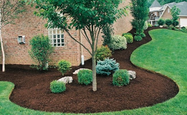 How to Keep Weeds Out of Mulch