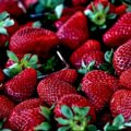 Strawberries Companion Plants