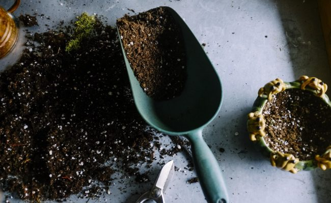 HOW TO MAKE GARDEN SOIL