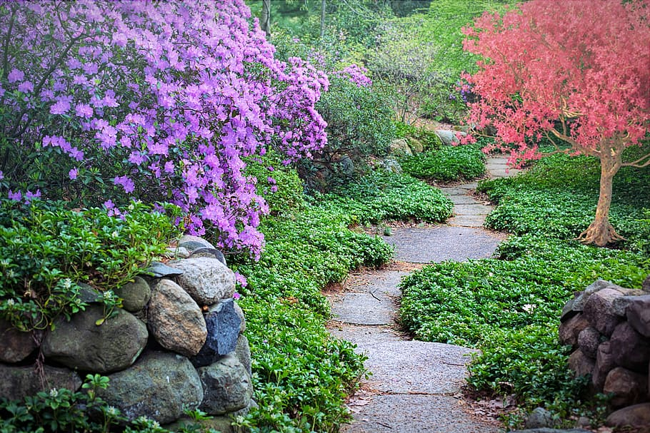 10 landscaping style concepts to improve your home garden